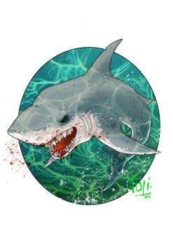 White Shark by 7oti