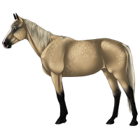 Horse Adopt2 SOLD by Zivera