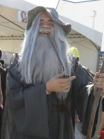 Gandalf the Grey by deixaeutirafoto