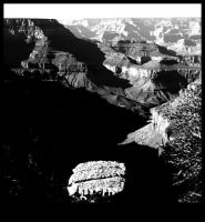 Grand Canyon III by Lucky13Grl