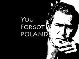you forgot poland wp by asjova