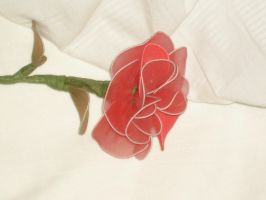 Silk Rose 2 by francy-stock