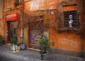 trastevere by bewing