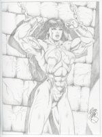 A buff Vampirella by Robb Phipps by zefly88