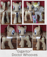 Giant Doctor Whooves by phasingirl