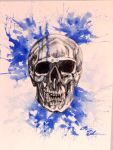 Skull Study by Midnight-Sun-Art