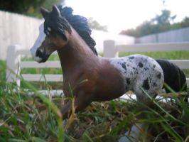 Custom Painted Schleich Horse by cmartkid