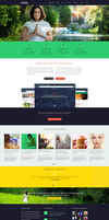 Ortax-WP Theme by pixelzeesh