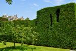 Levens Hall 99 by Forestina-Fotos