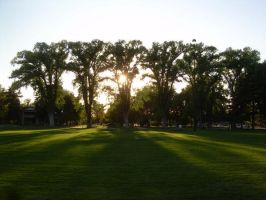 Park Sunset by abuseofstock