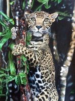 A Jaguar Named Boo by Brandyrose