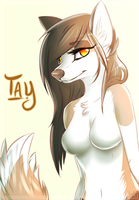 Tay ::Anthro:: by LittleSpiritWing