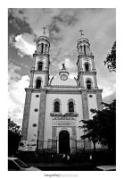 Catedral de Culiacan by noohohIcant