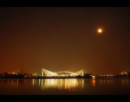 Midnight Flock by Flamix
