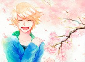 Cherry blossom(Ivan Karelin) by ukayoro