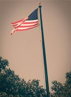 Bandera americana by Worldboy1