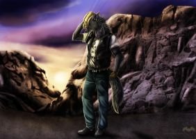 ...::: doniago -Exclusive-Commission- Sunset :::.. by AmorpheusArt