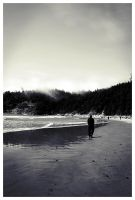 Oregon Coast by twistedelegance