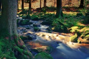 HDR River by Finvara