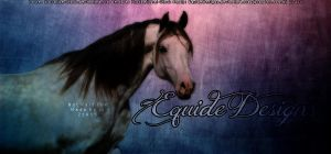 Arabian Horse Pic by EquideDesigns