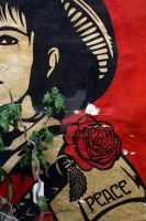 A Shephard Fairey Installation by AcidEnergy