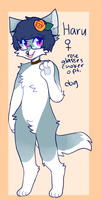 Furry by captyns