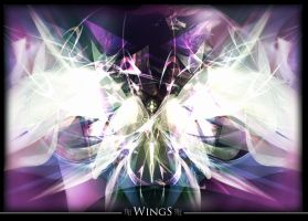 Wings by Angel-Bella-Donna