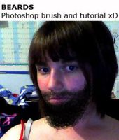 Beards: Tutorial and Brush. by hannarb