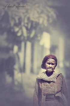 The Old Lady by jd-photowork