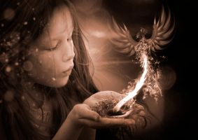 Phoenix Birth by Nameisavailable