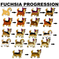 Fuchsia Progression by Fuchsianess