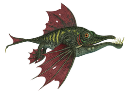 Dragon Fish PNG Stock by Roys-Art