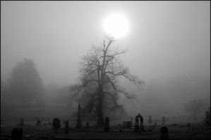 Foggy Cemetery 4 by nikongriffin