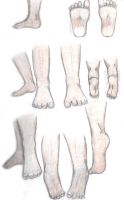 Anatomy Study - Feet by Xihana