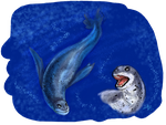 Leopard Seal by Gbtz007
