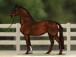 A Different Sort of Saddlebred by strixx-variaa