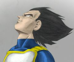 Vegeta the prince by dude6667