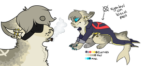 Character Design :AUCTION: :CLOSED: by Swift-The-Kitty