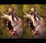 I'll catch you by Salvarion