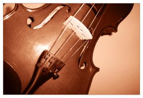 The Violin . I by luiscds