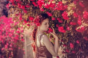 Where the wild roses grow by DarkVenusPersephonae