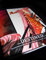 Destined Art Book by Takumy