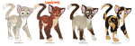 Adopt these kitties (All for 80 points) by MlSTY