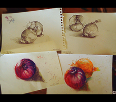 Onions Study by MorghaneMestriaux