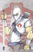 Storm Shadow G.I.Joe by ChrisOzFulton