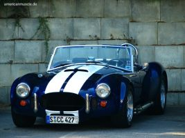 The Cobra by AmericanMuscle
