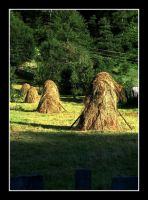 Haymaking time by Alissia666