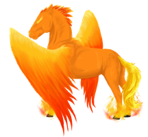 Phoenix Horse Coat by Wolf-Shadowrunner