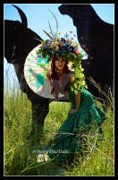The Summer Queen Mab by chimeramindstudio