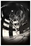 Moon Tree by paikan07
